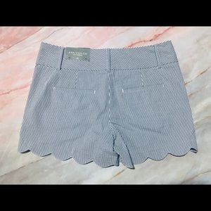 LOFT Shorts - NWT Ann Taylor Loft scalloped shorts